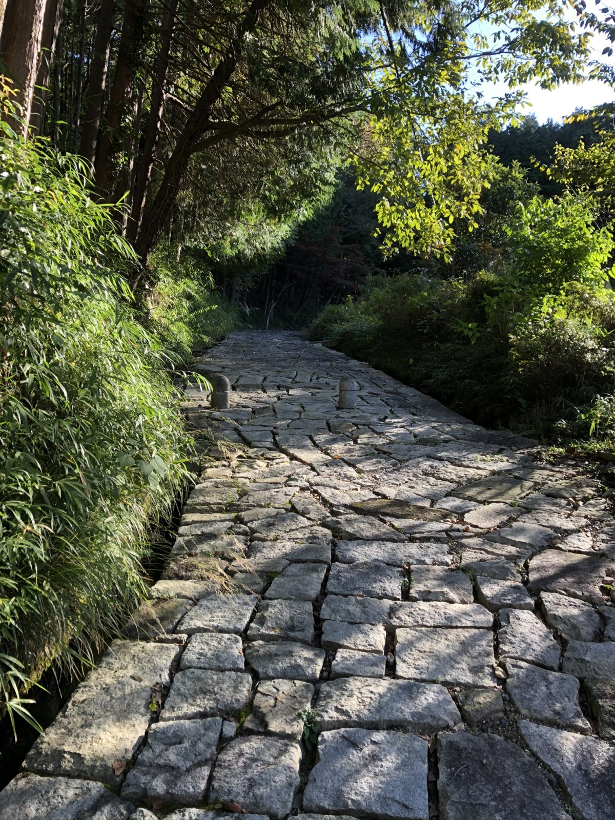 ティータイムサロンと中山道